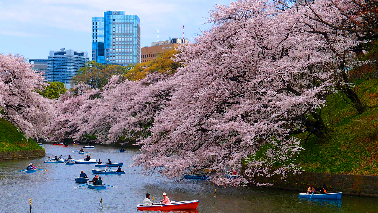 PHOTOGRAPHY WORKSHOP TOKYO